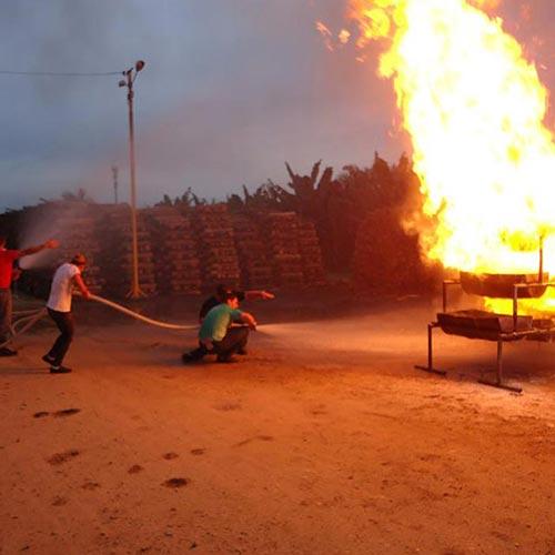 Imagem de Treinamento Prático para Combate ao Fogo
